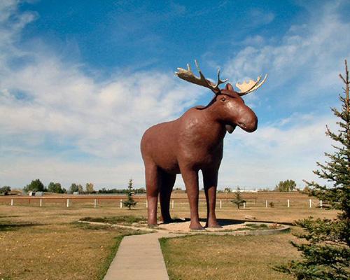 Orthotics Service in Moose Jaw, Saskatchewan, Canada